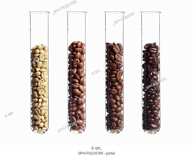 Raw, light, medium and dark roast coffee beans in test tubes