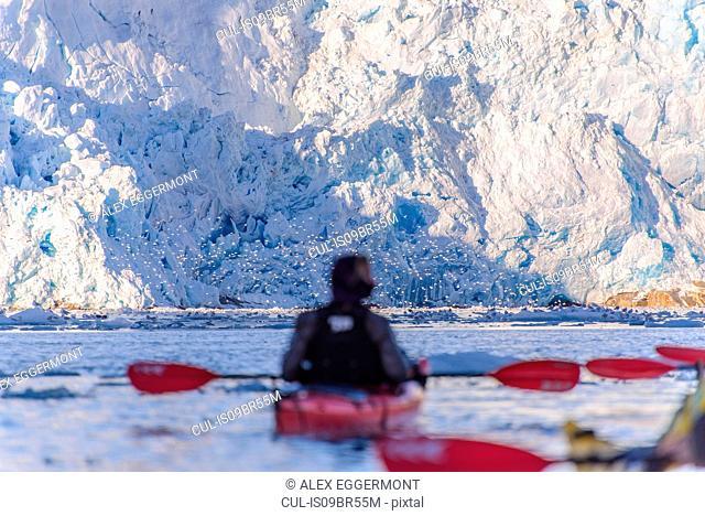 Man kayaking near glacier, Narsaq, Vestgronland, Greenland