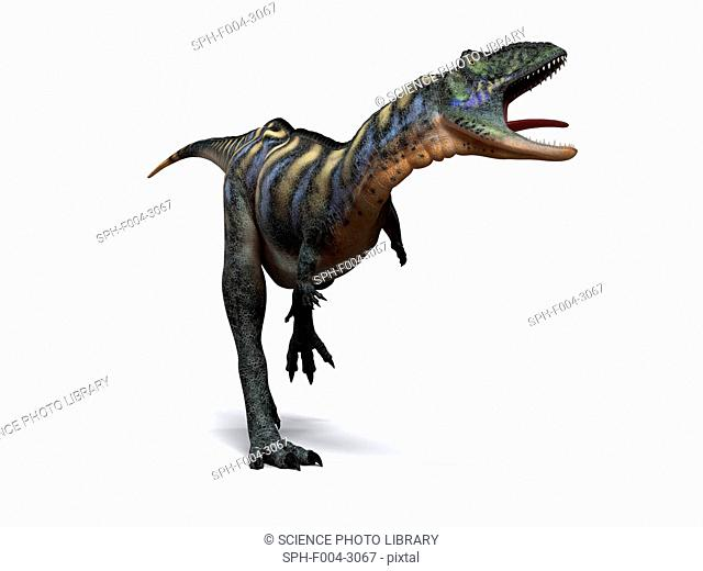 Aucasaurus dinosaur. Computer artwork of an Aucasaurus, a medium sized dinosaur from Argentina that existed during the late Cretaceous