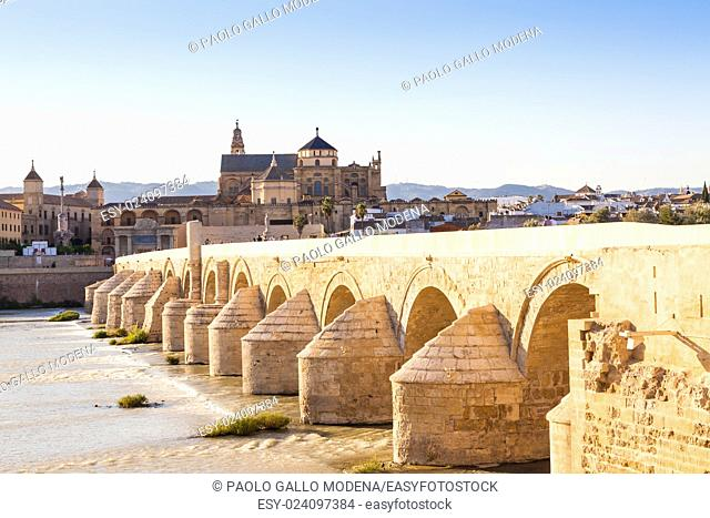 Cordoba Bridge in Spain - sunset time, detail of 16 archades