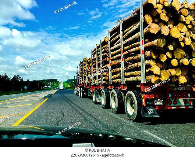 A long trailer truck transporting logs, Quebec, Canada