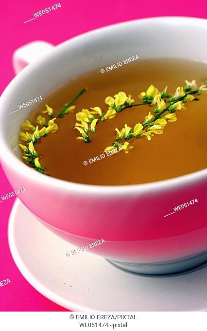Sweet clover tea (Melilotus officinalis)
