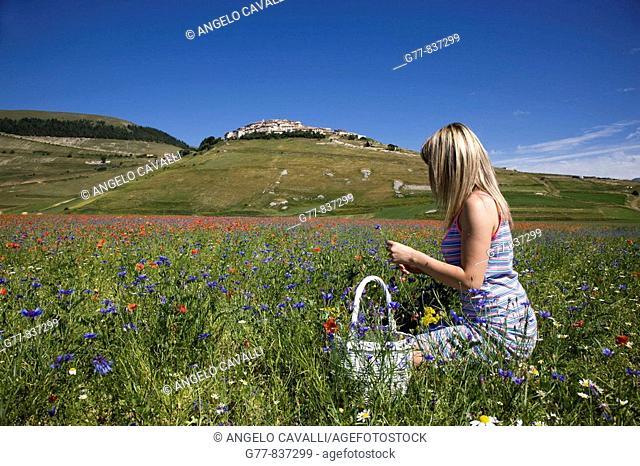 Italy, Umbria, Norcia, Castelluccio di Norcia, Woman in poppies field