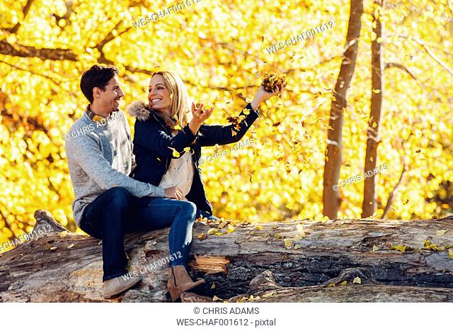 Happy couple having fun in autumn in a forest sitting on a trunk