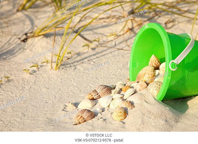USA, Florida, St. Petersburg, plastic bucket filled with sand and seashells