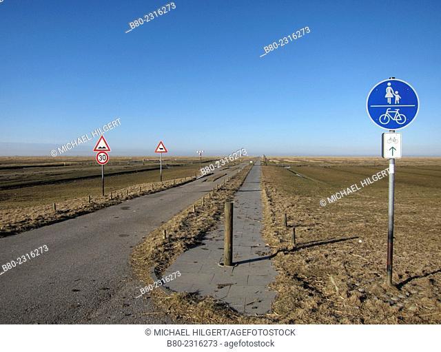 Salt marsh, tide, floodplain, Hamburger Hallig, Wadden Sea and Hallig Islands National Park, the North Sea, Schleswig-Holstein, Germany, Europe