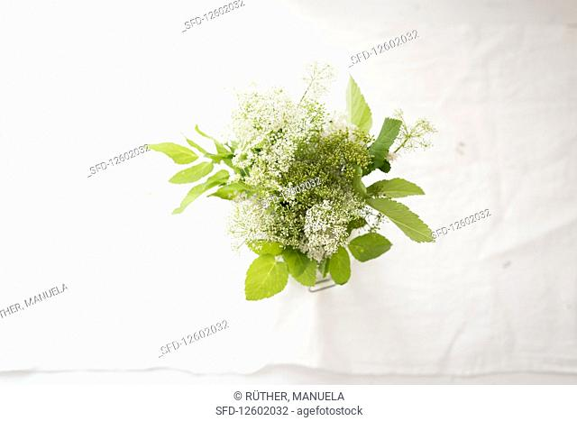 Fresh wild herbs in a glass of water