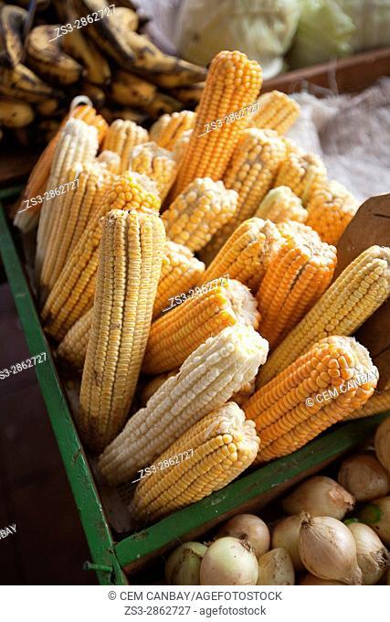 Corns for sale at the city market, Havana, La Habana, Cuba, West Indies, Central America