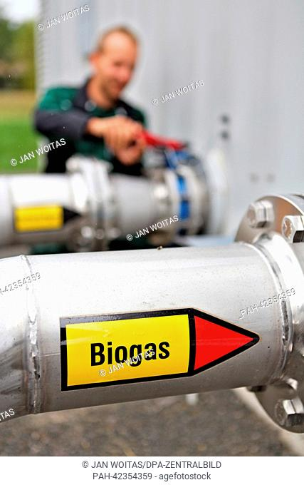 An employee checks a slider on the grounds of a biogas facility in Brandis, Germany, 03 September 2013. On this day, the facility of the company juwi GmbH was...