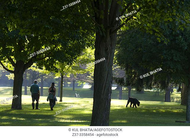 Outing for a man, woman and their dog on a lovely morning in a park, Ontario, Canada