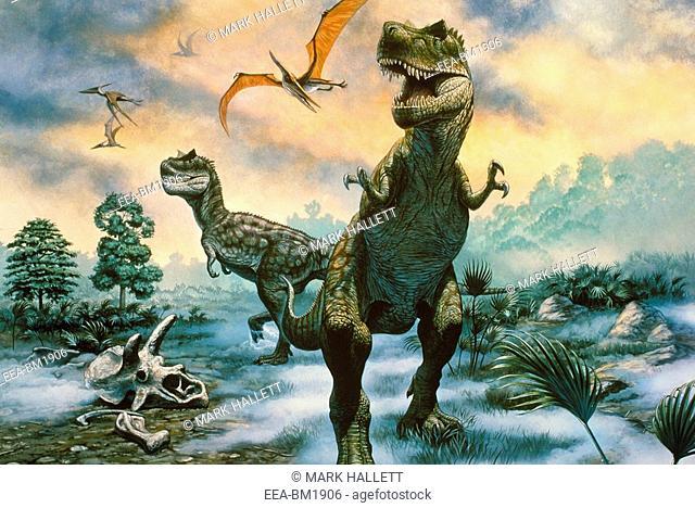 Tyrannosaurus Tyrannosaurus rex a large carnivorous dinosaur from the late Cretaceous era in North America