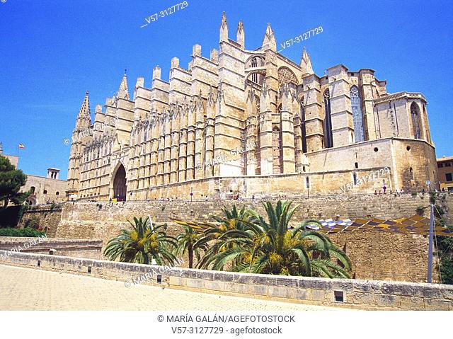 Gothic cathedral. Palma de Mallorca, Balearic Islands, Spain