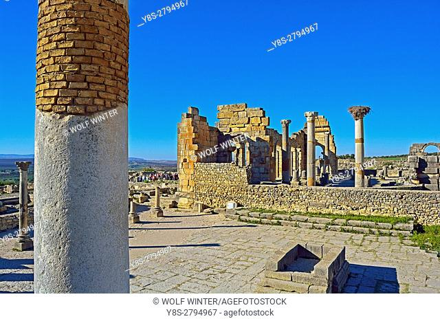 Roman archaeological Site Volubilis, Middle Atlas, Morocco
