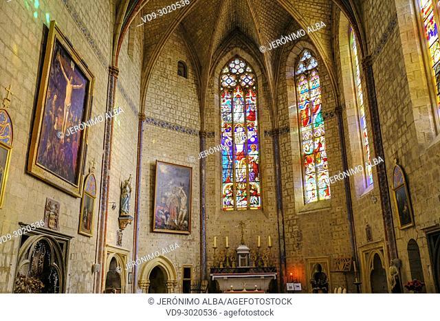 Collegiate Saint-Pierre, church. Village of La Romieu on the way of Saint Jacques de Compostelle. Le Gers Department, New Aquitaine, Midi Pyerenees