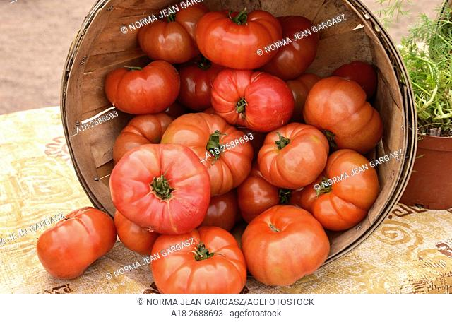 Tomatoes, Farmers Market, Tucson, Arizona, USA