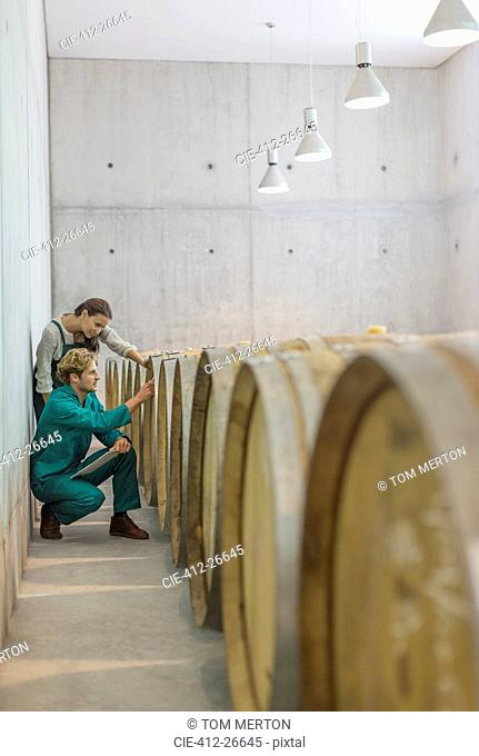 Vintners examining barrels in winery cellar