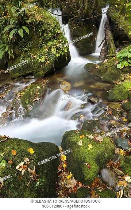 Little river at Somiedo, Asturias, Spain