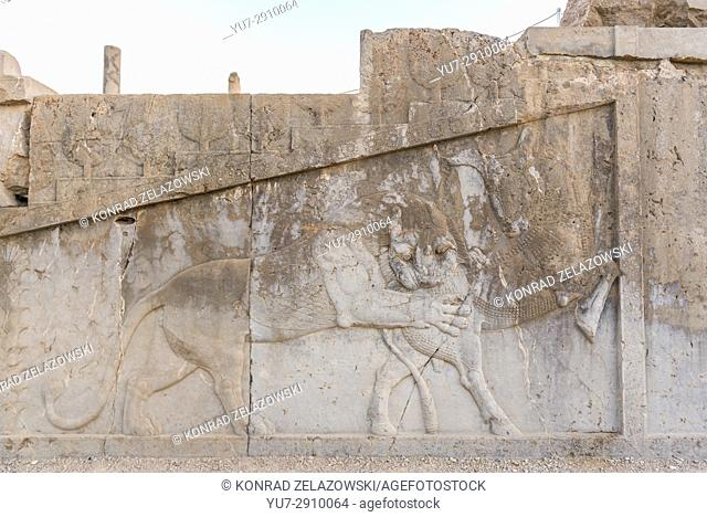 Relief of lion attacking bull on one of the palaces in ancient city Persepolis, ceremonial capital of Achaemenid Empire, Iran