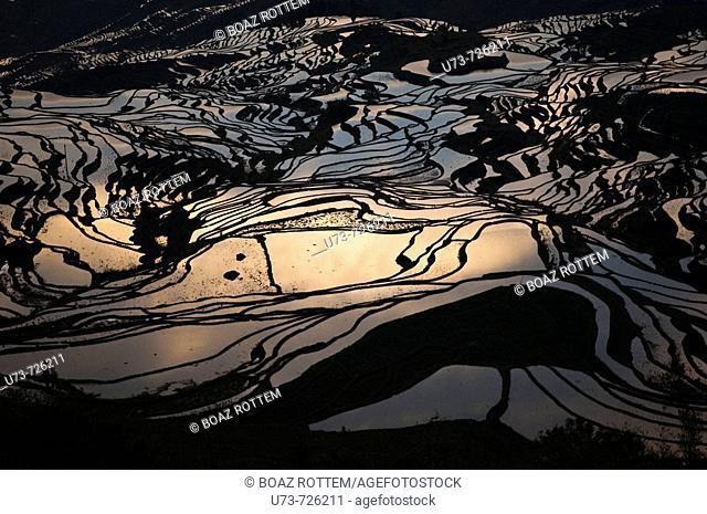 Beautfiul reflection, YuanYang rice terraces in Yunnan, China