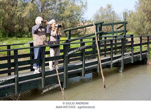oasis of boscoforte, valleys of comacchio, po river delta, emilia romagna, italy