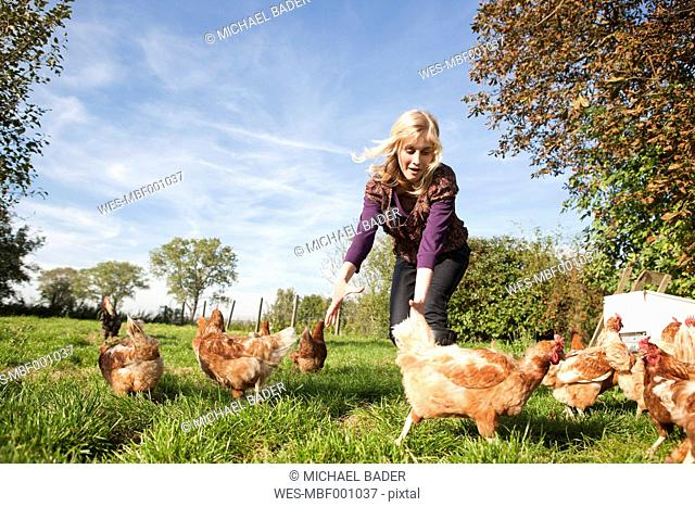 Germany, Saxony, Young woman catching hens at the farm