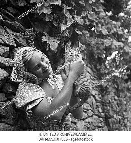 Eine junge Frau spielt in einem Weinberg mit einer Katze, Österreich 1930er Jahre. A young woman playing with a cat in a vineyard, Austria 1930s