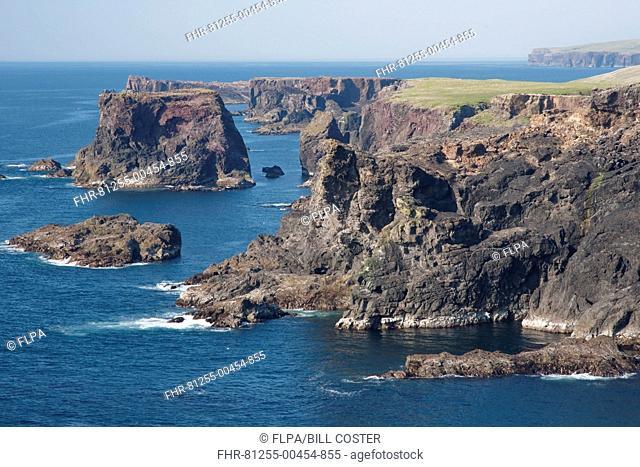 View of coastline and sea cliffs, Eshaness, Mainland, Shetland Islands, Scotland, May