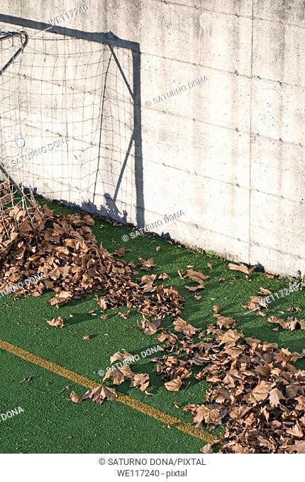 Fallen leaves on football court play area