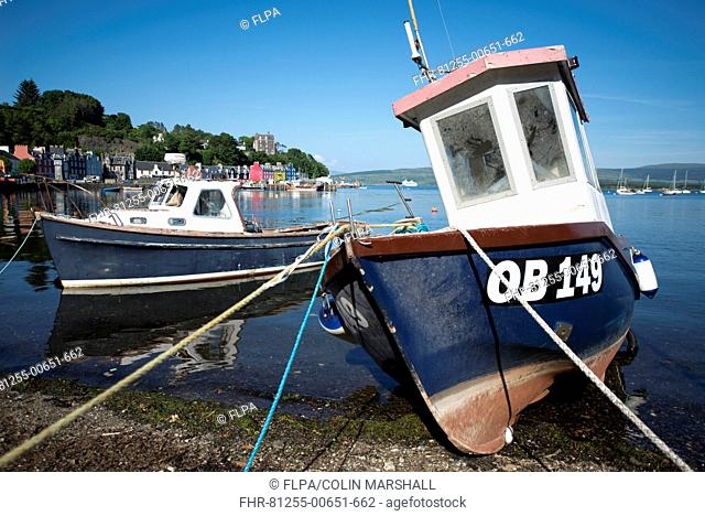 Fishing boats moored on beach at harbour of coastal town, Tobermory, Isle of Mull, Inner Hebrides, Scotland, July