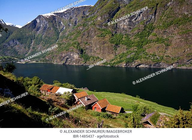 View of the old farm settlement Otternes on the Aurlandsfjord, Norway, Scandinavia, Europe