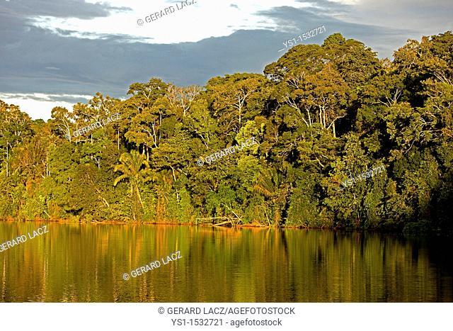 Tropical Forest and Madre de Dios River, Manu National Park in Peru