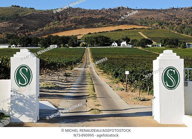 Seidelberg wine estate, Western Cape, Sotuh Africa