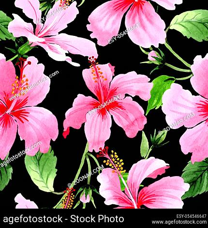 Wildflower hibiscus pink flower pattern in a watercolor style. Full name of the plant: hibiscus. Aquarelle wild flower for background, texture, wrapper pattern