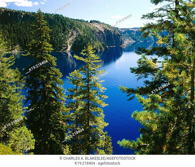 Crater Lake National Park (looking Southeast from Cleetwood Cove Trail, morning). Oregon. USA