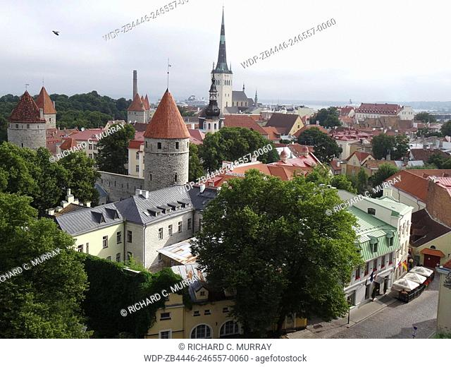 Tallinn Old Medieval Town Overview Celebrity Constellation in Background-Tallinn, Estonia