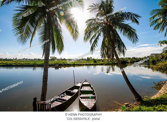 Palm trees and boats on river, Hoi An, Quang Nam Province, Vietnam