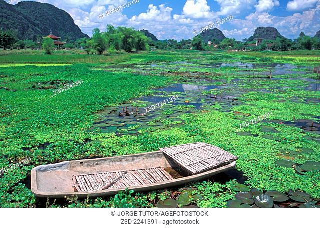 Traditional vietnamese boat in a lake full of aquatic plants near Hoa Lu Vietnam