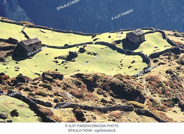 Kharka , summer settlement on way to Gokyo lake , 4750 meter , Mount Everest area , Nepal