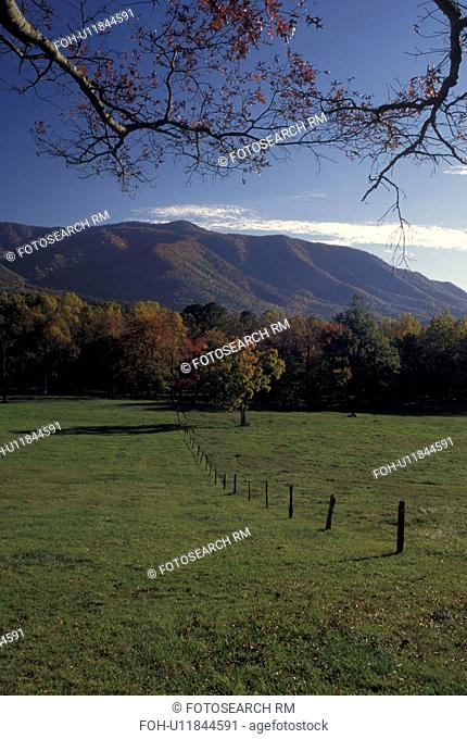 TN, Tennessee, Great Smoky Mountains National Park, Cades Cove, fall