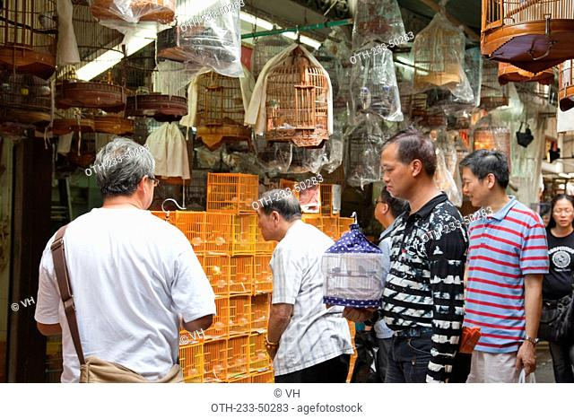 Bird lovers shop at Yuen Po Street bird market, Mongkok, Hong Kong