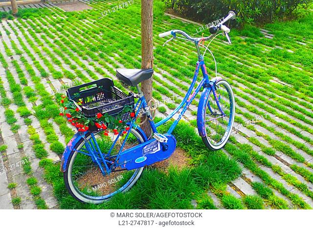 Old bicycle at outdoor