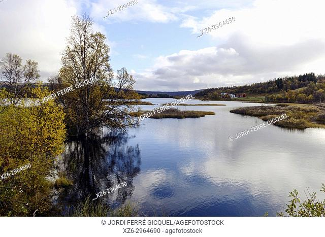 Glomma river, on Glåma, is the longest and largest river in Norway, road FV561, Sør-Trøndelag county, Norway, Europe