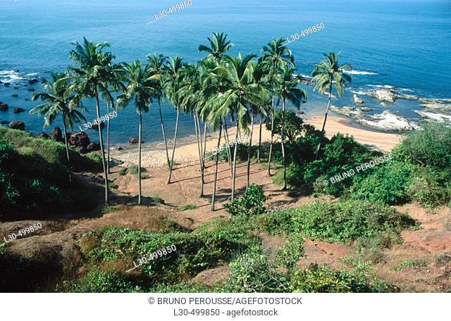 Anjuna. Goa, India