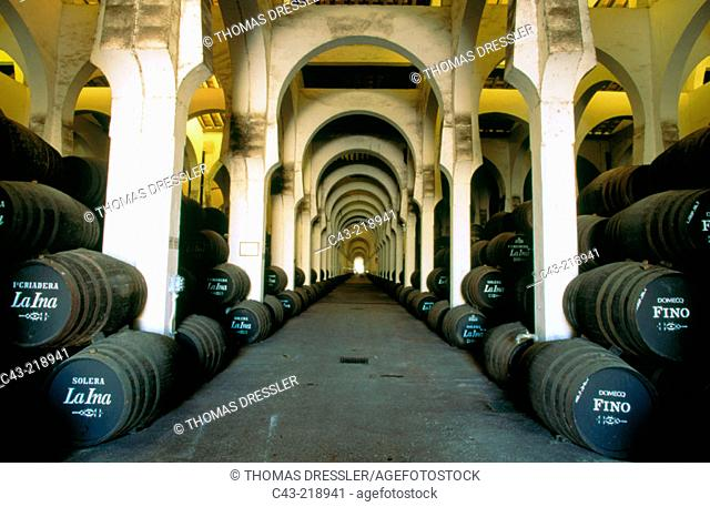 Stacked oal barrells in a huge cellar at the bodega Pedro Domecq. Jerez de la Frontera. Cadiz province. Andalusia. Spain