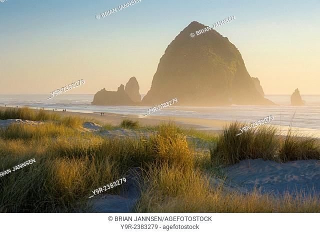 Evening sunlight over Haystack Rock and the Cannon Beach, Oregon, USA