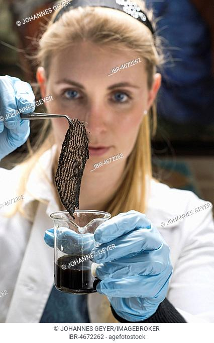 Restoration studio, restorer, woman holds a piece of linen with tweezers in a colour sample for supporting tissue, Munich, Bavaria, Germany