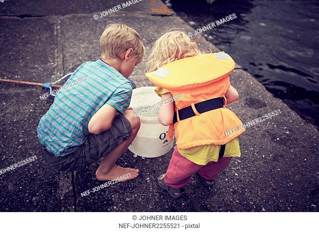 Children looking into bucket