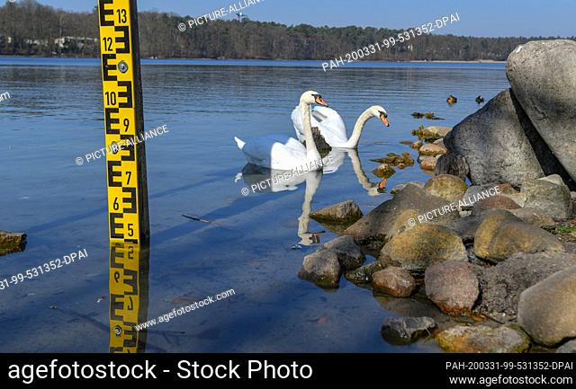 26 March 2020, Brandenburg, Strausberg: Low tide at the Straussee gauge. Climate change with hot and dry summers and lack of precipitation endangers the...