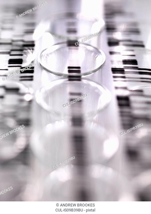 DNA autoradiogram gel illustrating genetic results laying on a row of test tubes in the laboratory