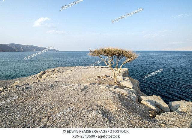 Musandam Peninsula in Khasab, Oman